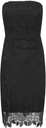 Sam Edelman Strapless Lace Midi Dress