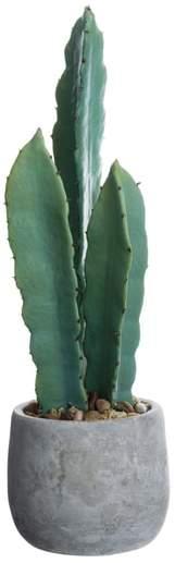 ALLSTATE Cactus Decoration