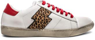Amiri Viper Leopard Calf Hair Low Sneakers
