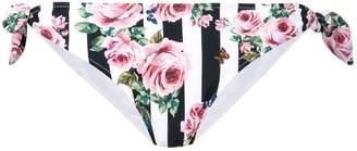 Dolce & Gabbana striped rose print bikini bottoms