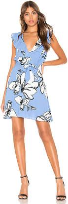 Parker Sahara Dress