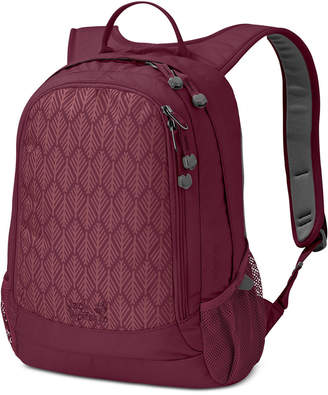 Jack Wolfskin Perfect-Day Backpack from Eastern Mountain Sports