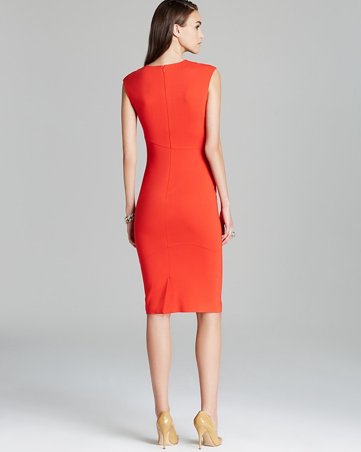 Raoul Cara Contour Dress