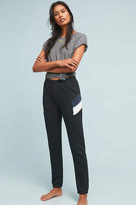 Wildfox Couture Sport Knox Sweatpants