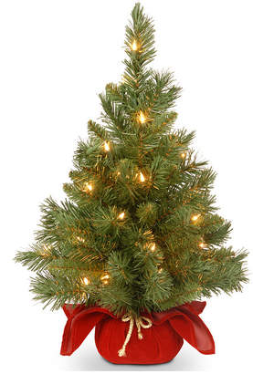 """National Tree Company 24"""" Majestic Spruce Tree in Burgundy Cloth Bag with 35 Warm White Battery Operated Led Lights"""