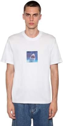 MSGM Shark Print Cotton Jersey T-Shirt