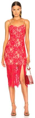 Nicholas Rubie Lace Bra Dress
