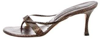 Manolo Blahnik Snakeskin Slide Sandals