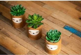 Ebern Designs Sloth Desktop Succulent Plant in Ceramic Pot