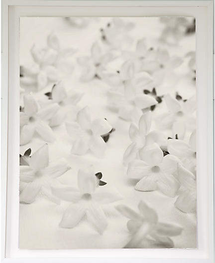 White Blossoms on Linen - Dawn Wolfe 54