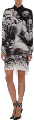Mary Katrantzou Park Bench Shirt Dress