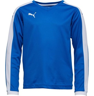 Puma Junior Boys Pitch Long Sleeve Shirt Royal/White