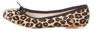 Bloch Ponyhair Leopard Flats