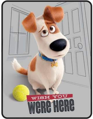 """Universal Pictures Secret Life Of Pets Missing You 46"""" x 60"""" Kids Plush Throw"""