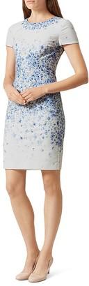 HOBBS LONDON Hannah Dress $315 thestylecure.com