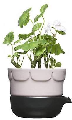 Sagaform Herb Pot