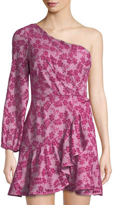 La Maison Talulah Aurora Floral Eyelet Cotton Mini Dress