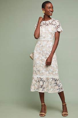 Shoshanna Beaulieu Lace Dress