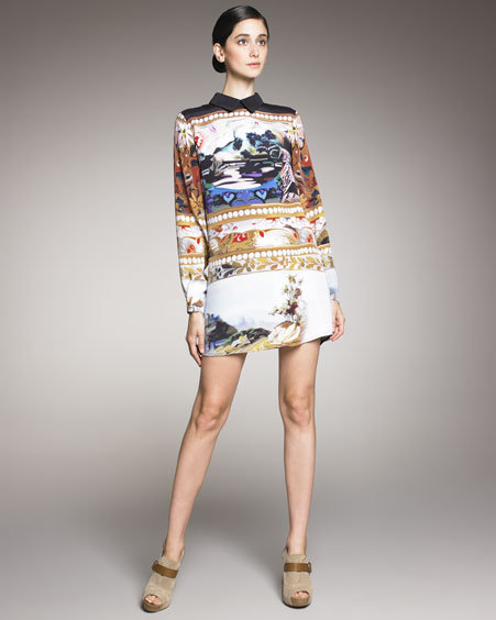 Mary Katrantzou Scenic-Print Shirtdress