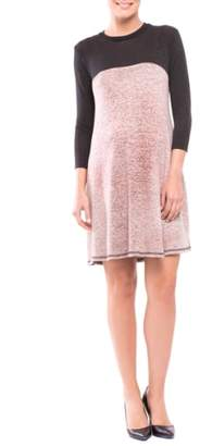 Olian Paola Maternity Sweater Dress