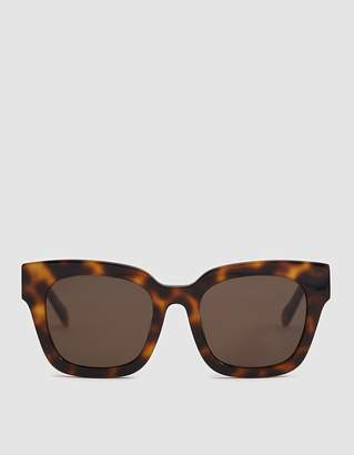 Need Saga Sunglasses in Tortoise Dark
