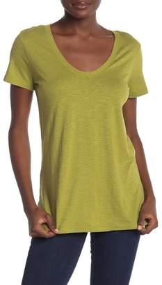 Susina Solid Scoop Neck T-Shirt (Regular & Petite)