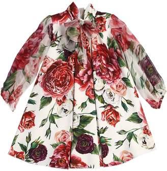 Dolce & Gabbana Rose Printed Crepe & Chiffon Dress