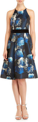 Eliza J Jacquard Floral Fit & Flare Dress