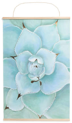 24x36 Succulent Rolled Canvas Wall Art