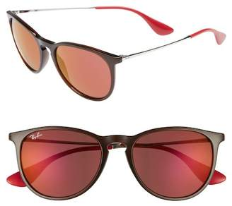 Ray-Ban Erika Classic 54mm Rounded Retro Sunglasses