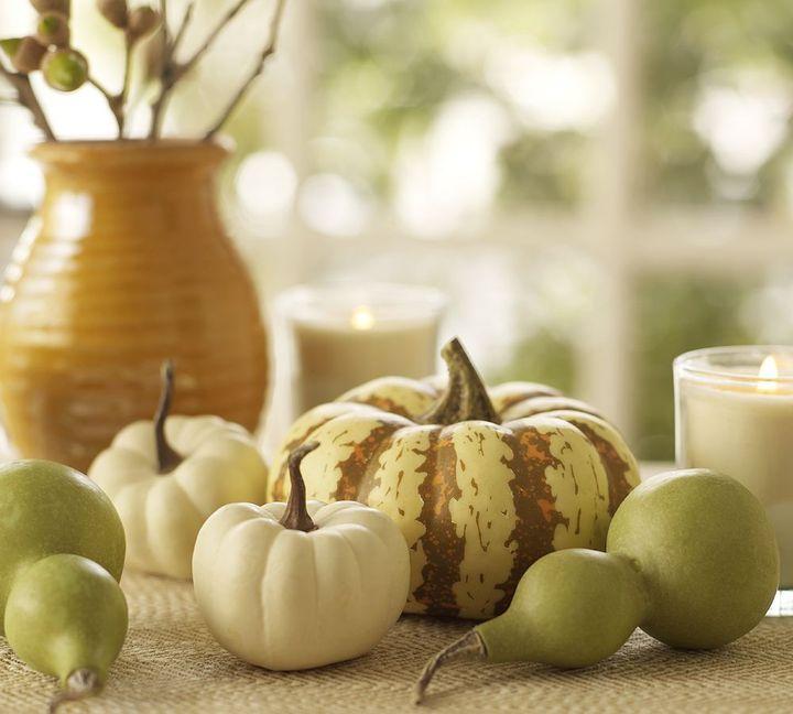 Mini Pumpkin & Gourd Vase Filler