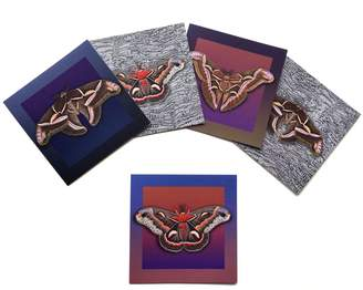 Arlette Ess Set of 5 Textured Greeting Cards with Envelopes Assorted Giant Silkmoths