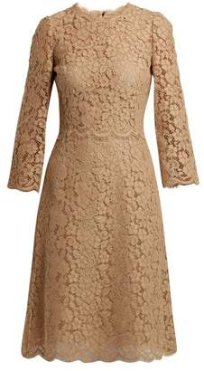 Dolce & Gabbana Cordonetto Lace Midi Dress - Womens - Light Brown