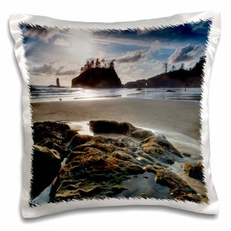 3dRose Beach, Olympic National Park, Washington, USA - US48 TNO0017 - Tom Norring - Pillow Case, 16 by 16-inch