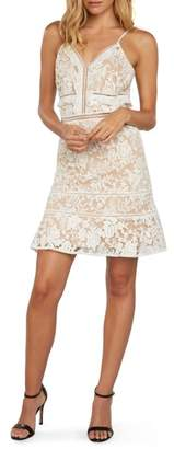 Willow & Clay Embroidered Mesh Minidress