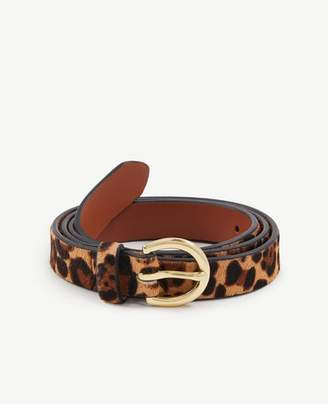 Ann Taylor Leopard Print Haircalf Trouser Belt
