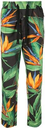 Dolce & Gabbana bird of paradise print track trousers