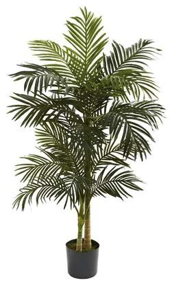 Beachcrest Home Golden Cane Palm Tree Floor Plant in Pot