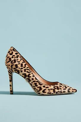 Sam Edelman Hazel Leopard-Printed Heels