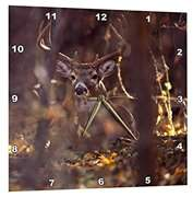 3dRose Hagerman NWR, Whitetailed Deer buck - US44 RBR0001 - Rick A. Brown, Wall Clock, 15 by 15-inch
