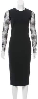 Novis Sheer-Paneled Bodycon Dress