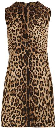 Dolce & Gabbana Short stretch leopard print dress