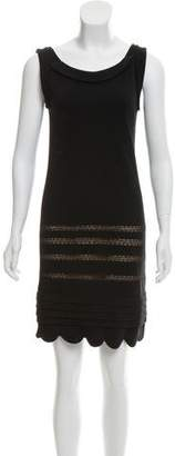 RED Valentino Sleeveless Lace-Trimmed Dress