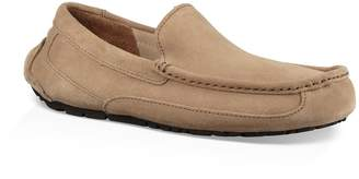 UGG Ascot Pinnacle Moc Driver