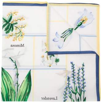 Sonia Rykiel botany scarf