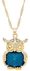 "C. Wonder 28"" Necklace with Novelty Owl Pendant"