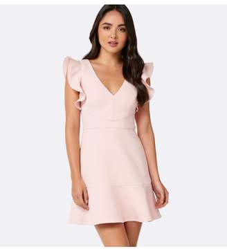 Ever New Cleo Frill Sleeve Mini Dress