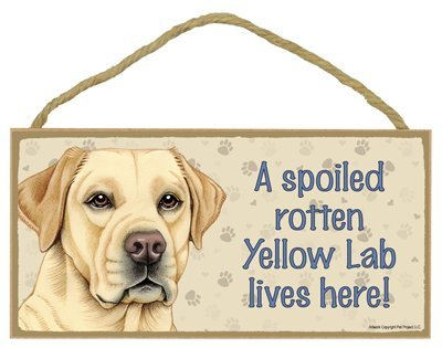"Breed Yellow Labrador Retriever - A spoiled ""your favoriate dog lives here! - Door Sign 5'' x 10''"