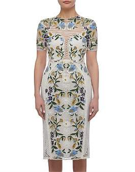 Thurley Vasette Lace Midi Dress