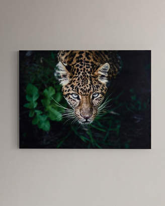 """Hide & Seek"" Photography Print Handmade HD Metal & Acrylic Art"